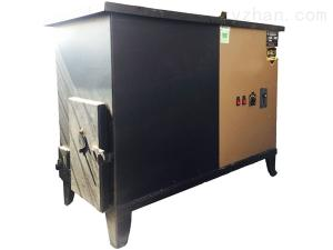 大連佳源生物質鍋爐-木屑顆粒鍋爐