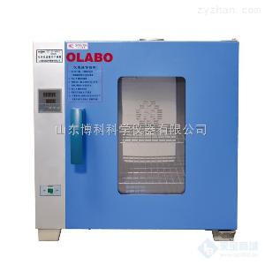 鼓风干燥箱欧莱博DHG-9203A型