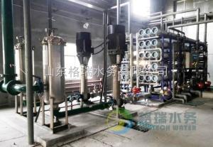 GR-RO-2广东油脂工业纯化水设备生产厂家