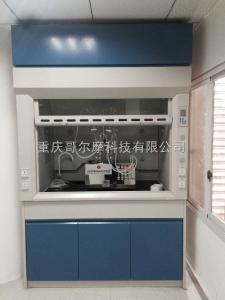 定制實驗室通風柜廠家就選重慶哥爾摩科技