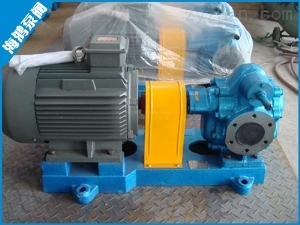 齒輪泵廠家/海鴻泵閥sell/銅輪齒輪泵