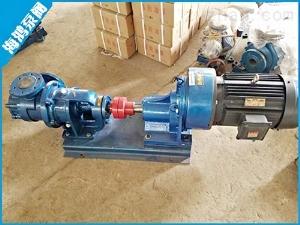 凸輪轉子泵/海鴻泵閥sell/NYP高粘度轉