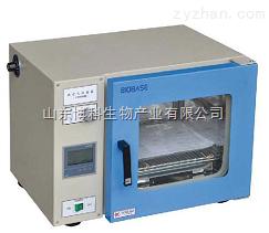 干热消毒箱-BGRX-91