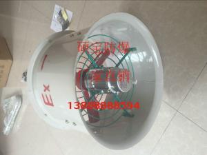 工厂大风量防爆轴流式风机CBF-500/600