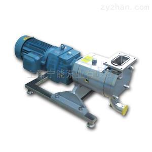 V型進口上海寧能V型進口不銹鋼轉子泵