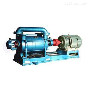 2BE型水环真空泵温州厂家