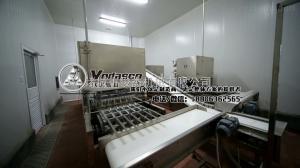 1000散裝血豆腐生產線,血旺加工設備