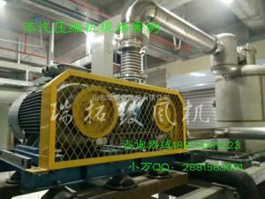 RTSR水处理罗茨风机生产厂家曝气风机供应商