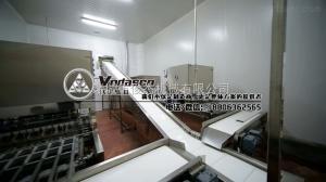 1000散裝血豆腐生產機器,血旺全套加工設備