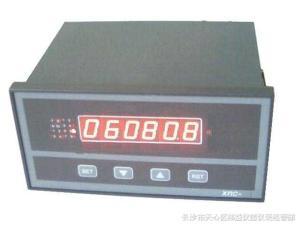 XMC-160/6S多路求和計數器