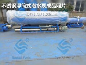 QJFQJF浮筒式潛水泵現貨供應