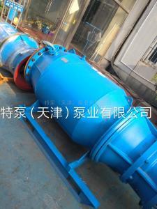 QZB邯鄲雪橇式潛水軸流泵現貨