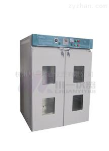 工业电热鼓风干燥箱DGF-4A/4AB大容量