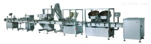 YMKL型自动瓶装数粒包装生产线