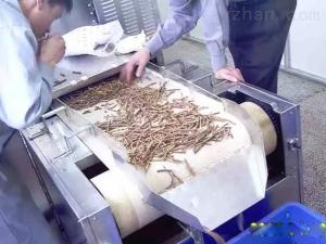 HMWB-15X中药材微波软化机