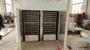 CT-1橄榄果烘干机 恒温热风循环烘箱