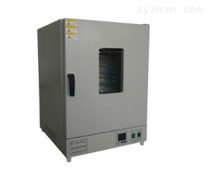 DHG-9030 300℃系列立式鼓风干燥箱