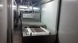 蘭州微型微波烘干設備