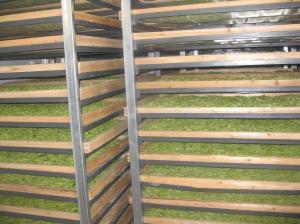 箱式金银花烘干设备 河南干燥机厂家