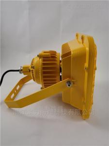 長沙LED免維護防爆燈100W