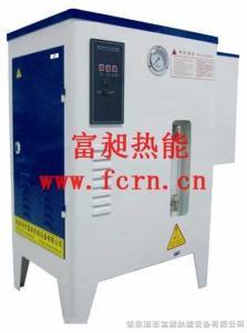 LDR0.017-0.7小型電加熱蒸汽發生器,配套藥用貼標機