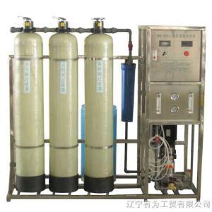 52041RO-300单级反渗透纯净水设备