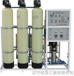 65045凈化水設備