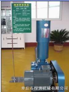 LZSR125綠洲羅茨鼓風機