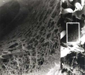 HFGF玻纤披覆氟聚物微孔滤膜