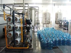 天津0.5-20吨/小时纯净水厂设备