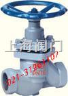 U11SM-1.0內螺紋柱塞閥