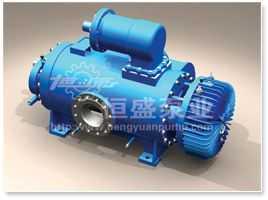 2W.W 型雙螺桿泵