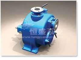 WZW 型自吸式污水泵