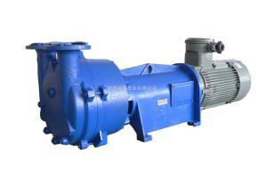 2BV6110、6111、6121、6131、6161纳西姆2BV6121水环真空泵及配件