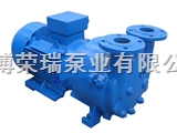 2BV5110、5111、5121、5161納西姆BV5131水環真空泵及配件
