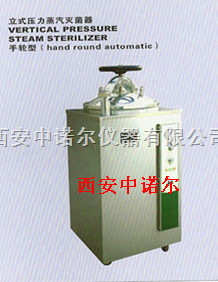 B120L/150L壓力蒸汽滅菌器廠家 立體式壓力蒸汽滅菌器 壓力蒸汽滅菌器型號 真空泵 培養箱