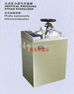 B35/50/75/100L-III压力蒸汽灭菌器  立体式压力蒸汽灭菌器 辽宁旋转蒸发器 磁力搅拌器