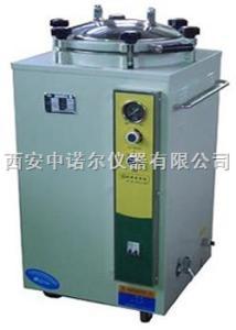 LS-C35L立体式蒸汽灭菌器 压力蒸汽灭菌器报价 真空泵 纯水蒸馏器