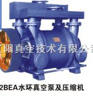 2BEA系列2BEA系列水環真空泵及壓縮機