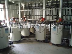 YNL0.05-0.7-Y(LSS0.05-0.7-Y)50kg/h全自動燃油蒸汽鍋爐-配豆腐機、煮豆漿、蒸箱用