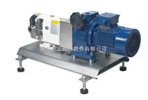 轉子泵 機械無極調速