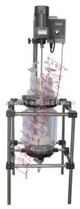 S212-PW砂芯反应釜