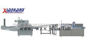 RX250-ZH120枕式包裝聯動生產線