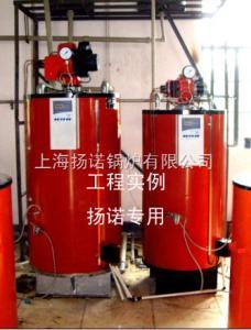 YNL0.1-0.7-Y/Q發酵罐配套用-產氣量100kg/h全自動燃油蒸汽鍋爐