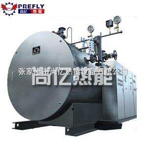 WDR電蒸汽鍋爐