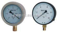 廠家供應YE系列膜盒壓力表