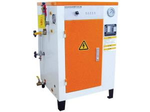 立式供應專業配套殺菌設備用電熱蒸汽發生器 張家港方快