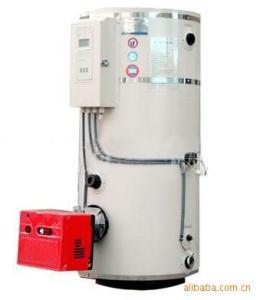 CLHS張家港方快 專業燃氣燃油熱水鍋爐用于*游泳