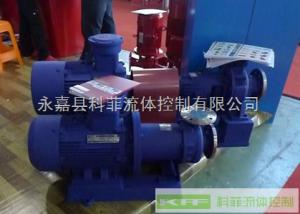 CQG型不锈钢耐高温磁力泵/化工泵