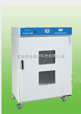 202-1AB電熱恒溫干燥箱